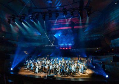 sunbeam-productions-swan-show-concert